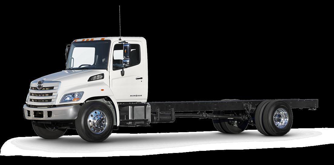 Hino celebrates 50,000th truck amid impressive growth ...